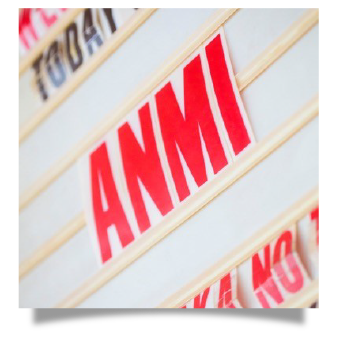 anmi PRODUCT